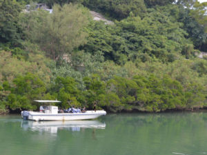 マングローブ遊覧による平和・自然環境学習